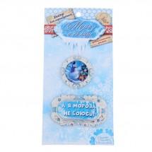 Декор металлический для скрапбукинга Мороз и солнце «Мороза не боюсь!», 7,4 × 14,6 см